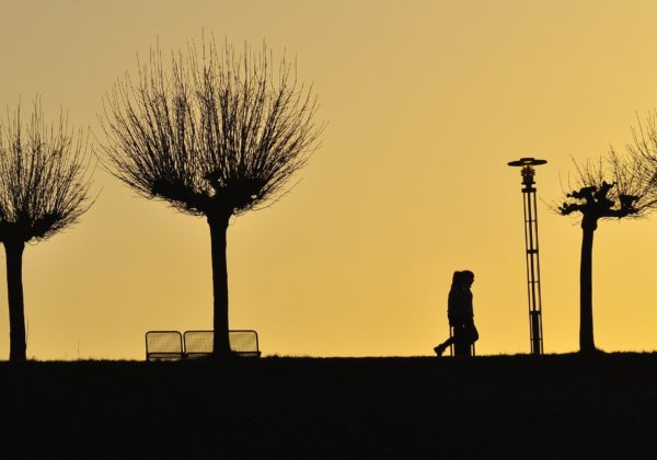 Snapseed(2)