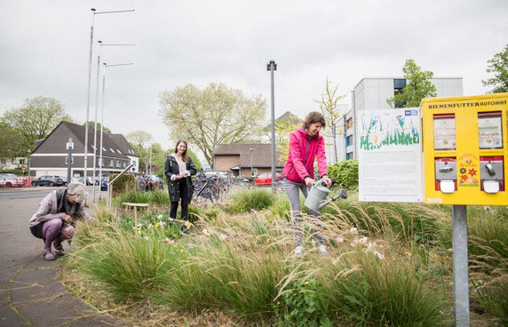 Stadt Moers – Weltbienentag: Artenvielfalt unterstützen durch weniger mähen