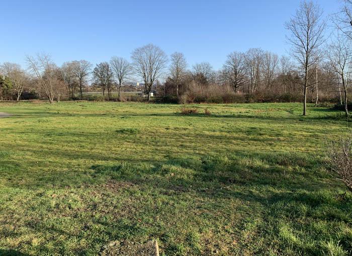 Stadt Moers – Mehr Summen, Brummen und Zirpen bald auf der Asberger Blumenwiese